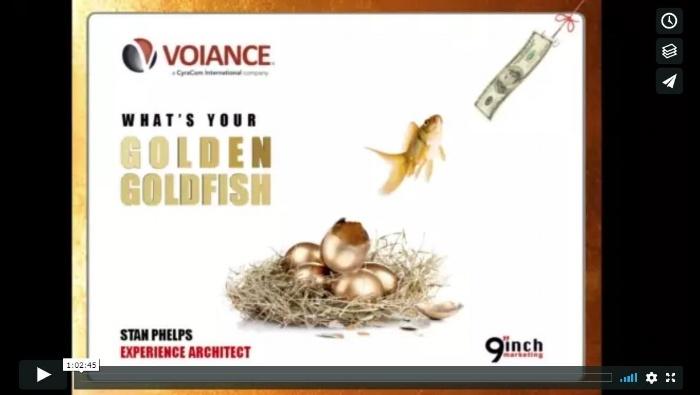 GoldenGoldfish700.jpg